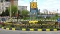 flori2011-102