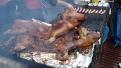 ziua-recoltei-rovinari-2011-22