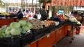 ziua-recoltei-rovinari-2011-29